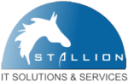 STALLION IT SOLUTIONS & SERVICES